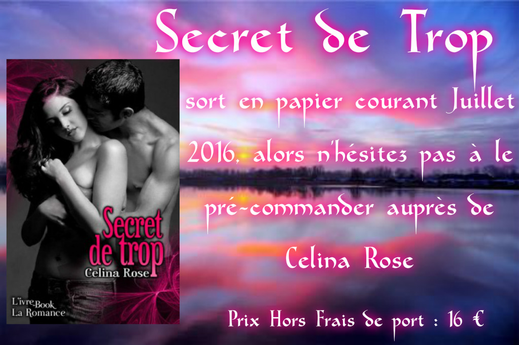 Secret de trop sort en papier blog